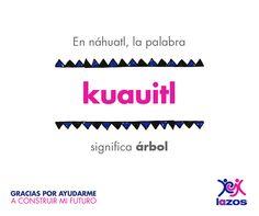 #Lazos #Náhuatl #LenguasManternas