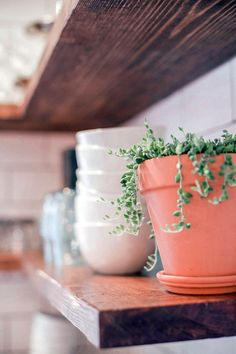 Adding greenery to your open kitchen shelving // farmhouse kitchen style First Kitchen, Open Kitchen, Apartment Therapy, Restored Farmhouse, Ikea, I Am Amazing, Upper Cabinets, Farmhouse Style Kitchen, Kitchen Shelves
