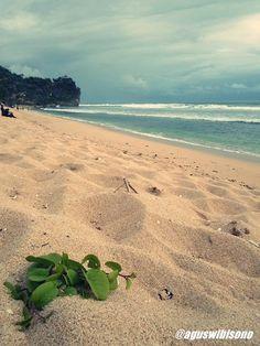 Pantai Pok Tunggal: Pesona pantai yang masih alami di Gunung Kidul Jogjakarta
