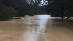 KILBOURNE AT GILLS CREEK  (Source: Zoltan)  Emotions overcome WIS meteorologist when he sees the sun Tuesday - wistv.com - Columbia, South Carolina