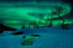 The aurora borealis traces the shifting patterns of the Earth's magnetic field, creating a spectacular midwinter show in Nordland Fylke, Norway. The green light in this image comes from oxygen atoms high in the atmosphere, which have been energized by subatomic particles from the solar wind. Photo by Arild Heitmann