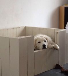 Very nice dog bed, made of wood / old pallets
