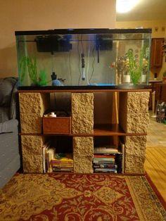 Cinder block for fish tank stand. 125 Gallon Fish Tank, 75 Gallon Aquarium Stand, 55 Gallon, Diy Tank, Aquarium Supplies, Aquarium Ideas, Aquarium Fish, Aquarium Design, Fish Tanks