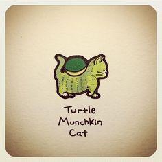 Turtle Munchkin Cat