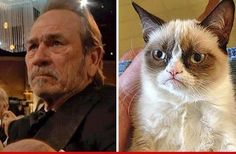 Tommy Lee Jones as the Angry Cat