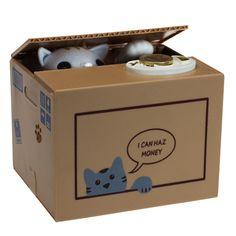 Die kleine Katze in dieser Box hat es auf Dein Geld abgesehen.