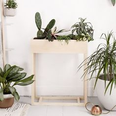 Learn how to make this modern plant stand!