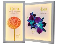 We love these indoor fabric light boxes for trade shows, events, and retail stores.