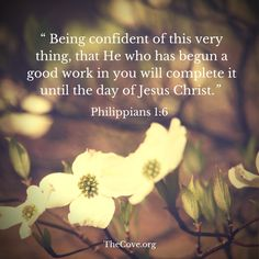 """Jesus is your SECURITY. """"And I am sure of this, that He who began a good work in you will bring it to completion at the day of Jesus Christ."""" Philippians 1:6"""