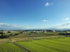 A shinkansen ride with a view.  #travel #ricefields #japan #新幹線 #金沢新幹線 #instatravel #train #bullettrain