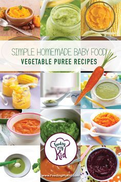Get Tons of Easy to Follow Vegetable Baby Food Puree Recipes. Find the recipes for a variety of nutritiously-dense savory purees to get you started on your baby's journey to loving vegetables.