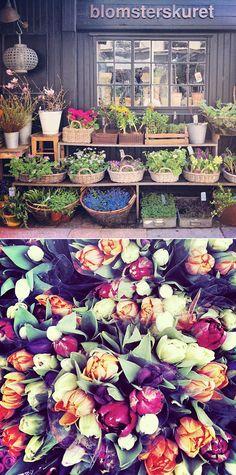 Copenhagen Market .. X ღɱɧღ