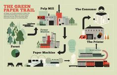 Tree to Consumer infographic / by Mike Lemanski