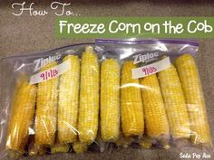 Do you want to have fresh corn on the cob all Winter long? If so, here is how to freeze corn on the cob so you can!  Click to get the full tutorial at www.SodaPopAve.com