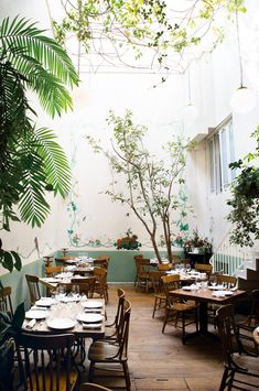 Things To Do Mexico City - Food, Shopping, Hotel Guide - Mexico - Restaurant Brasserie Paris, Places To Travel, Places To Go, Travel Destinations, Travel Things, Holiday Destinations, Mexico City Restaurants, Mexico Culture, México City