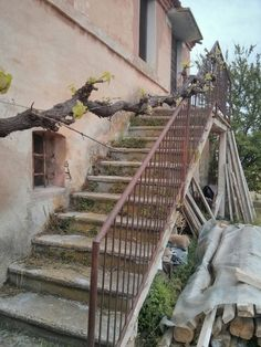 """The """"olive way"""" maison stairway"""