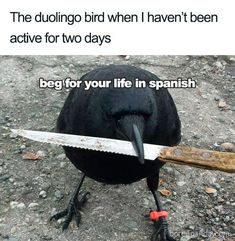 memes hilarious can't stop laughing ; memes to send to the group chat ; memes hilarious can't stop laughing funny ; 9gag Funny, Crazy Funny Memes, Really Funny Memes, Funny Laugh, Stupid Funny Memes, Funny Relatable Memes, Haha Funny, Funny Stuff, Most Hilarious Memes