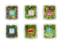 Satur Farms | Salad Packaging