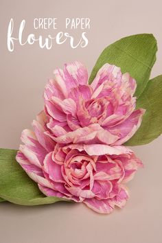 Big beautiful crepe paper flowers make a stunning statement, a lasting bouquet, a backdrop…the list goes on.