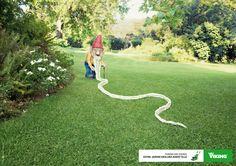 VIKING - Votre jardin vieillira avant elle