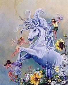 Unicorn and fairies