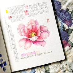 Study, aka Peony Rematch I don't know how flowers work—how light plays with petals, how it curves against them or toward them. Sketchbook Layout, Gcse Art Sketchbook, Sketchbook Inspiration, Sketchbook Ideas, Sketchbooks, Botanical Drawings, Botanical Art, Botanical Illustration, Art Watercolor