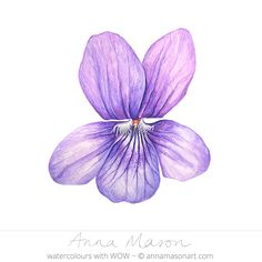 "Violet © 2009 ~ annamasonart.com ~ 23 x 23 cm (9"" x 9"")"