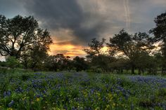 Texas Hill Country - Home   Jason St. Peter