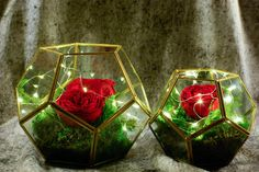 Terrarium with preserved rose and moss LED lights by Floralescence