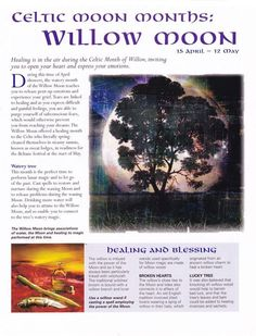 Celtic moon months Willow moon / Book of Shadows