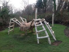 Wooden Spider Climb: Hand carved, this is climbing apparatus shaped like a giant, wooden spider. Children find it simultaneously terrifying and thrilling. Natural Outdoor Playground, Outdoor Fun, Backyard Play, Backyard For Kids, Garden Yard Ideas, Garden Crafts, Wooden Climbing Frame, Kids Play Equipment, Kids Yard