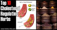 Top 10 Cholesterol Regulating Herbs ►► http://www.herbs-info.com/herbs-for-cholesterol.html?i=p