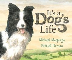 It's a Dog's Life by Michael Morpurgo, Patrick Benson Best Children Books, Childrens Books, Michael Morpurgo Books, Super Pictures, Baby Owls, Owl Babies, Best Authors, Work With Animals, Children's Picture Books