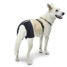 Brace used for dog arthritis or dogs with hip dysplasia. It improves joint performance and reduces discomfort.