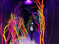 A high-tech storytelling gameworld, Meow Wolf, has just opened its doors in Santa Fe, New Mexico.