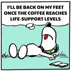 Snoopy Needs Coffee Life Support. Me too, Snoopy. Coffee Is Life, I Love Coffee, My Coffee, Monday Coffee, Coffee Plant, Coffee Girl, Coffee Shop, Coffee Mugs, Peanuts Quotes