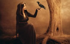 Beautiful fantasy girl, raven, tree, witch, black dress wallpaper 2560x1600