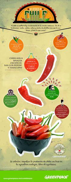 Una breve reseña de la inmensa variedad de especies de chile que caracteriza la gastronomía mexicana.