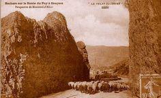Regards et Vie d'Auvergne.: Estive en Montagnes de la Haute-Auvergne