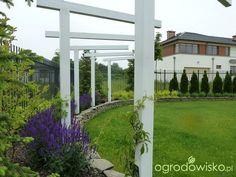 Symetryczno-liryczny z widokiem na Ślężę - strona 7 - Forum ogrodnicze - Ogrodowisko