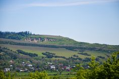 verdant hill