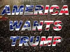 """Donald Trump has brought more excitement and hope to America during this campaign than anybody could've imagined. Trump We, Vote Trump, Pro Trump, Donald Trump, Trump Is My President, Greatest Presidents, Trump Train, Trump Pence, Conservative Politics"