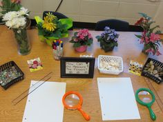 Inquiry centers can be set up like this. There should be different items for the students to explore in order to draw their own conclusions. Allow students to be the agent of their own learning and allow them to learn at their own pace. Science Inquiry, Inquiry Based Learning, Preschool Science, Project Based Learning, Science Classroom, Science Lessons, Teaching Science, Science Education, Science For Kids