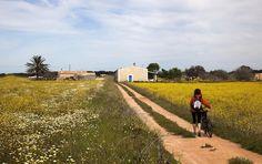 Camino de El Pilar al faro de La Mola, Formentera
