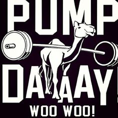 Pump day! Woo Woo! #Humour #Fitness | Come get your fitness on at Powerhouse Gym in West Bloomfield, MI! Just call (248) 539-3370 or visit our website powerhousegym.com/welcome-west-bloomfield-powerhouse-i-41.html for more information!