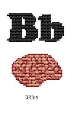 Modern Cross Stitch Kit - Human Body Parts - Alphabet - B for Brain Anatomical letters