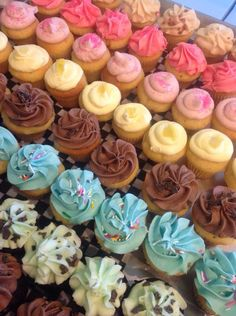 Colourful mini cupcakes by Happycakes