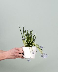 Ann-Katrin Barf´s cup with spring flowers | Photo Daniella Witte
