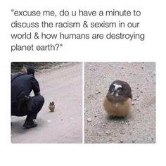 This bird speaks wisdom. ❤️ MariahJankins : Pinterest