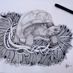 Awwwww...Little Herman has found himself a nice patch of Doodle leaves.  #Doodle #doodles #doodleart #featureuniverse #doodleuniverse #instaart #art #artist #artistic_share #picture #drawing #draw #pen #pencil #sketch #sketchbook #zentangle #zendoodle #Tortoise #nature #creative #originalart #art_we_inspire